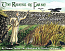 The Ravens of Farne: A Tale of Saint Cuthbert