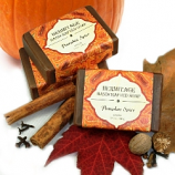 Pumpkin Spice Bar Soap