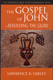 Gospel of John: Beholding The Glory